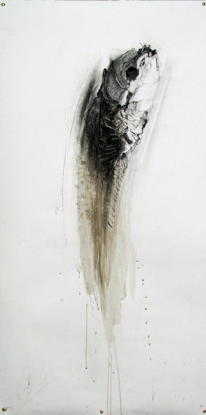 20 march Sally Simpson_Mummified Fish drawing lr